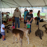 Fort Bend County Fair 2014 - 116_4331.JPG