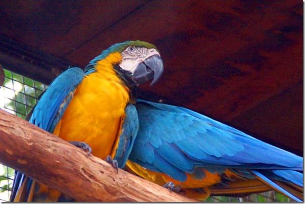 O que vimos e o que fizemos em Foz do Iguaçu - PR 14