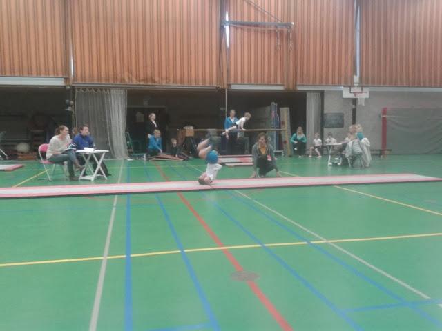 Gymnastiekcompetitie Denekamp 2014 - 2014-02-08%2B15.06.13.jpg