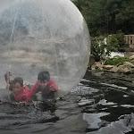 bolha-rio onça.jpeg