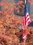 Fall foliage and U.S. flag