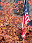 Fall foliage and U.S. flag