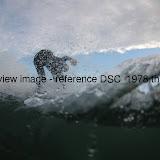 DSC_1978.thumb.jpg