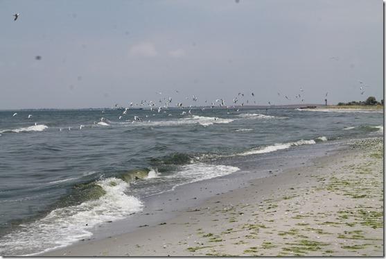 Кінбурн пляж