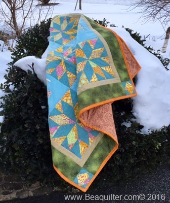 Lets Fly Quilt 3