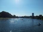 Badewetter an der alten Donau