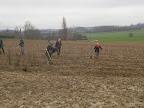 20120128-boomplantactie-preshoekbos / P1280041.JPG
