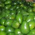 Estados Unidos levanta veda a frutas y vegetales de República Dominicana