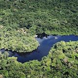 Cristalino Jungle Lodge, Mato Grosso. Brésil.
