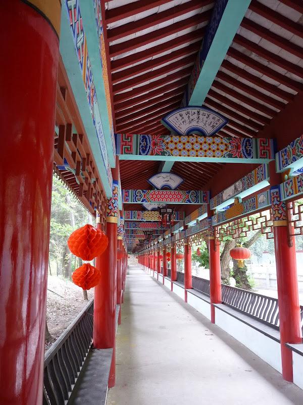 Chine .Yunnan . Lac au sud de Kunming ,Jinghong xishangbanna,+ grand jardin botanique, de Chine +j - Picture1%2B357.jpg
