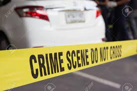 Hallan en La Vega dos cadáveres calcinados en un vehículo