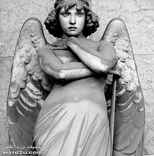 صور المقبره التى أصبحت متحفاً فنياً