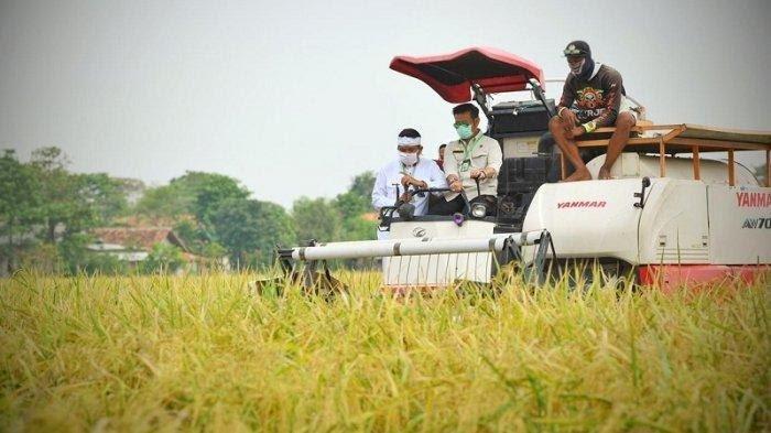 Kembangkan Sektor Pertanian,  Ini Harapan Kadin