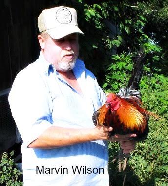 MarvinBBVWilson.jpg