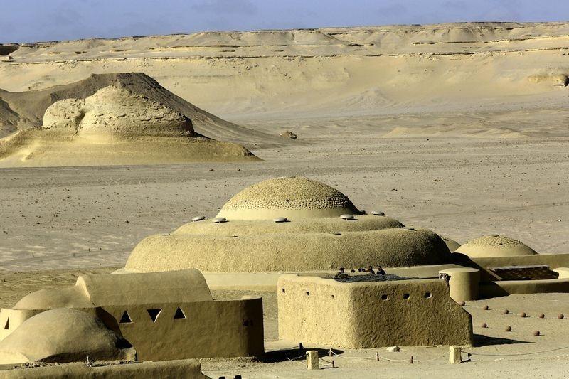 wadi-al-hitan-museum-7