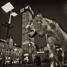 Oslo Tiger by Morten Gustavsen - Buildings & Architecture Statues & Monuments ( tourist, tiger, oslo, central station, norway )
