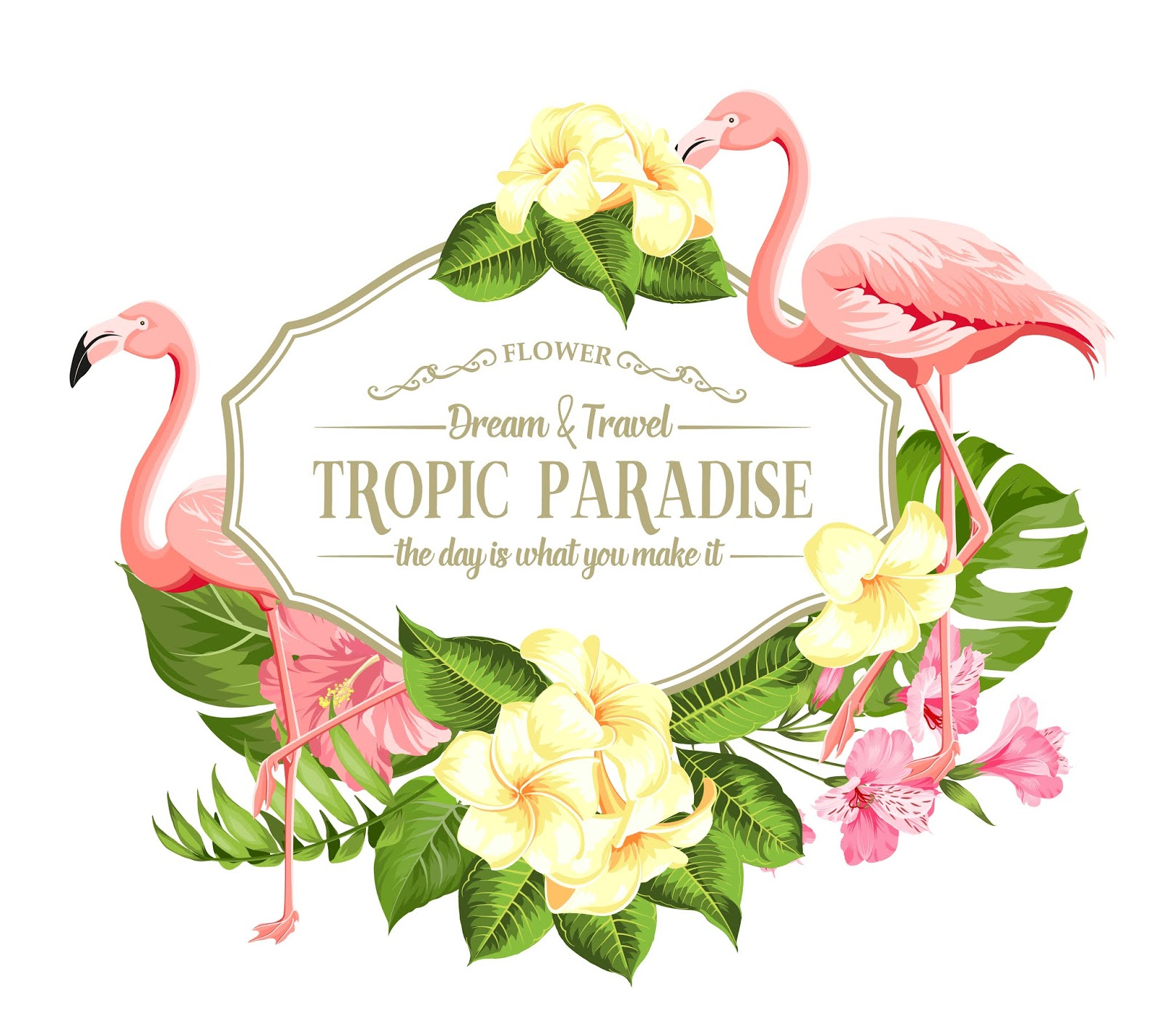 Frame Tropical Flower Flamingos Free Download Vector CDR, AI, EPS and PNG Formats