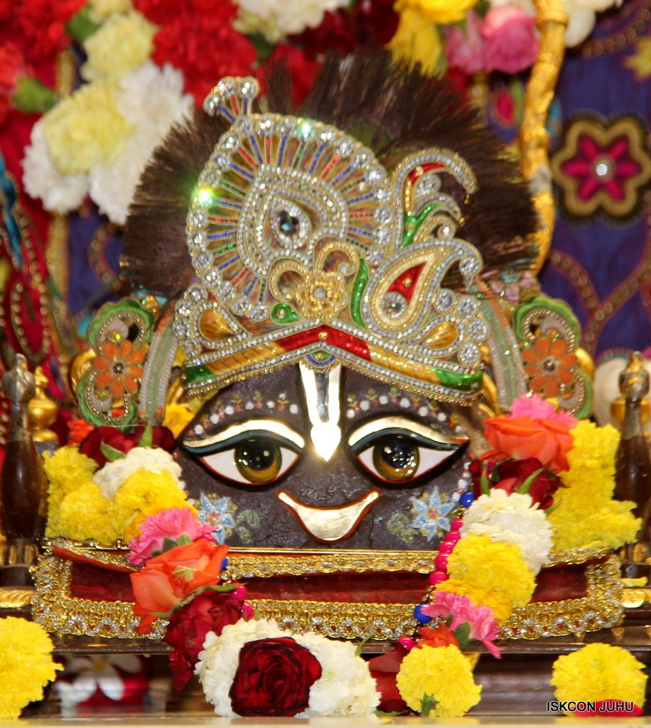 ISKCON Juhu Sringar Deity Darshan 20 Jan 2017 (9)