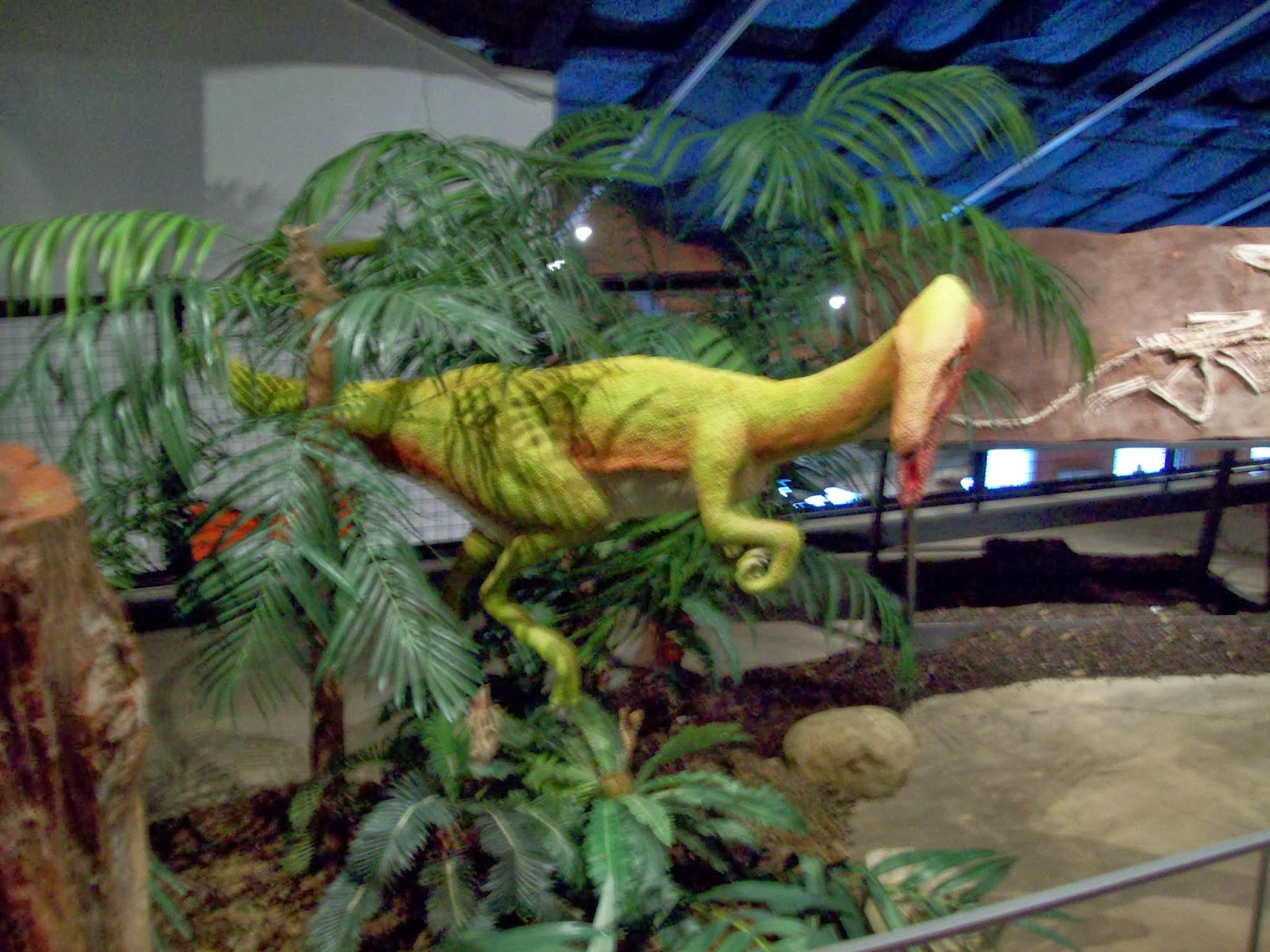 Houston Museum of Natural Science, Sugar Land - 114_6693.JPG