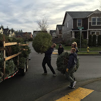 Christmas Tree Pickup - January 2016 - IMG_5728.JPG