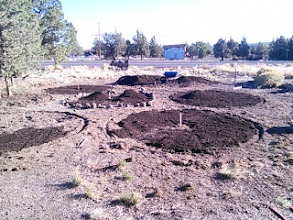 Photo: Adding soil to each bed. Paths will be next. I picked up some cover crops and I'll sow those this week after some good watering. The mandala is starting to come together!