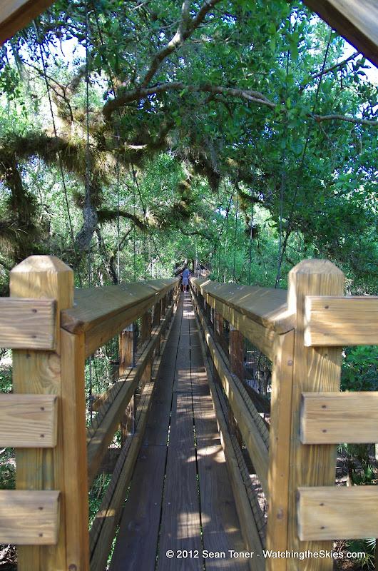 04-06-12 Myaka River State Park - IMGP9885.JPG