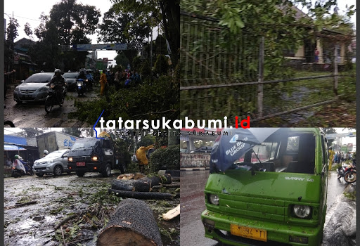 Pohon tumbang timpa mobil angkot di Jalan Sudirman Sukabumi // Foto : Dian Syahputra Pasi