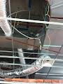 lắp đặt hệ thống ống gió TPP Việt Nam