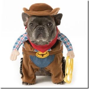 disfraces divertidos para perros  (31)