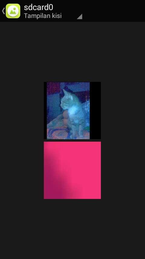Cara Menyembunyikan Foto dan Video di Galeri