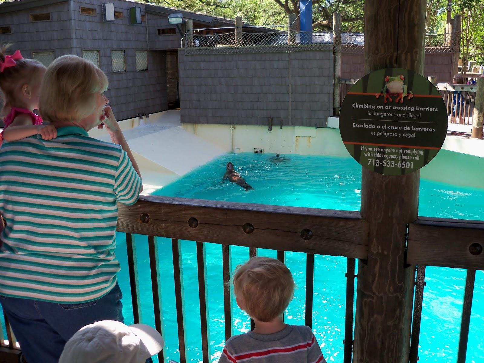 Houston Zoo - 116_8375.JPG