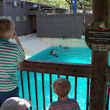 Houston Zoo - 116_8375.JPG