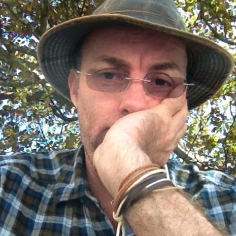 David Nimmo