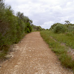 Winifred Falls service trail (35486)