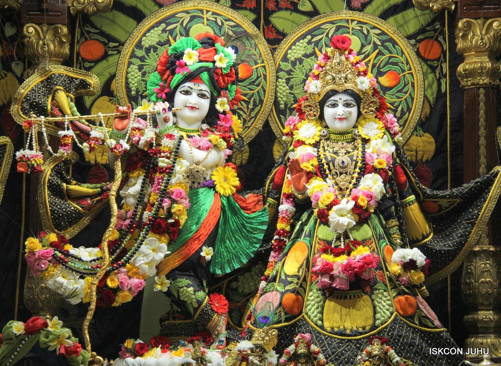 ISKCON Juhu Sringar Deity Darshan on 19th Nov 2016 (4)