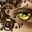 Soner Cırıt's profile photo