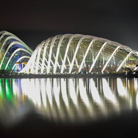 The Flower domes by Gonzalo Ruiz - Buildings & Architecture Other Exteriors ( city, tourist attraction, body, building, modern, cityscape, landmark, architecture, sky, reflection, town, large, metropolis, night, downtown, lighting, water, night life, structure, outdoors, urban, light, metropolitan area, river, travel, evening, lake, sitting )
