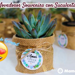 Novedosos Souvenirs con Suculentas y mini Cactus