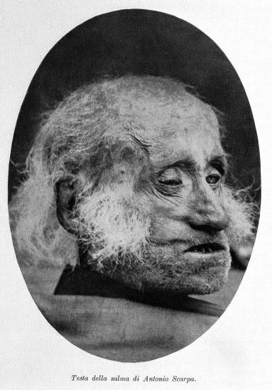 Cabeça de Antonio Scarpa