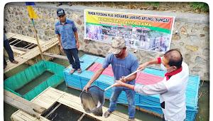 Komunitas 'Lampa Sama' Panen Perdana di KJA Sungai Dalam Kawasan ZLT Kota Bima