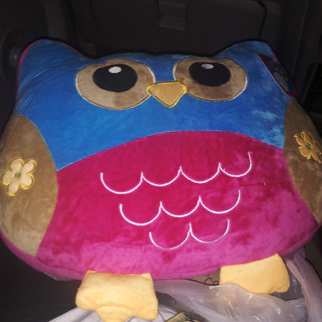 Bantal OWL