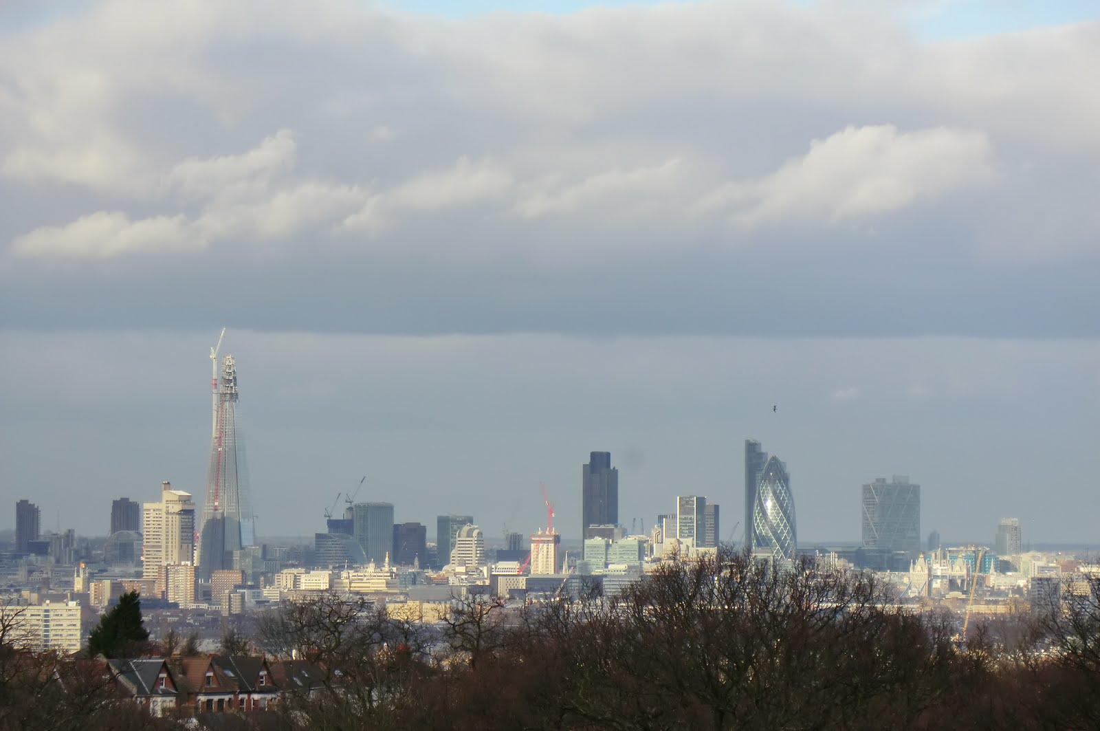 CIMG1526 London skyline from Horniman Gardens