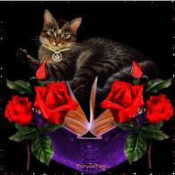 Pagan Cat