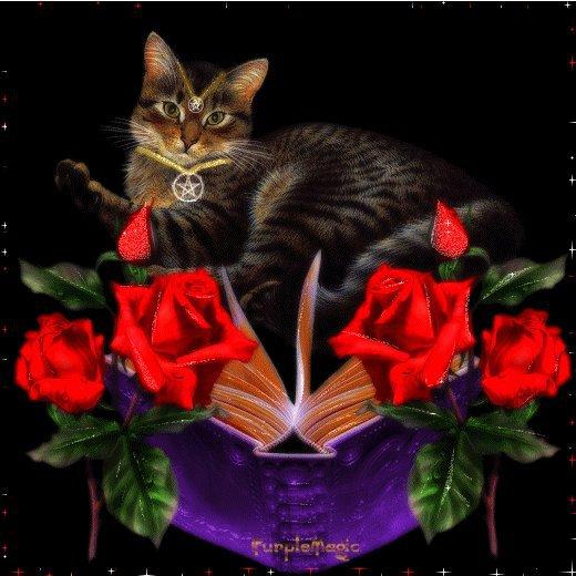 Pagan Cat, Mystic Cats