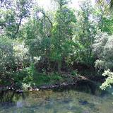 04-04-12 Hillsborough River State Park - IMGP9680.JPG