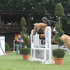 Turnier 2011 017.jpg