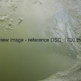 DSC_1700.thumb.jpg