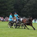 Paard & Erfgoed 2 sept. 2012 (45 van 139)