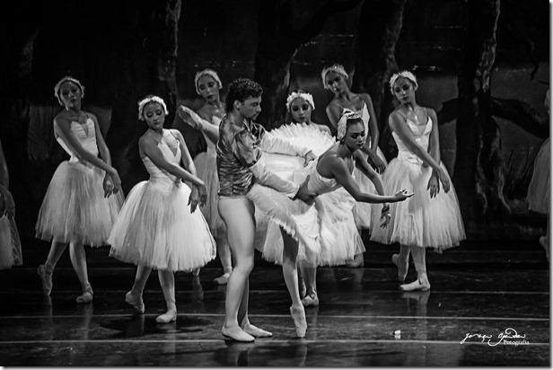 4ddeb8be83 Fotografía para principiantes  Como fotografiar una gala de Ballet.