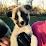 Jeff Horacek's profile photo